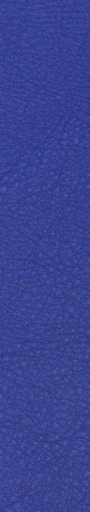Leder blau