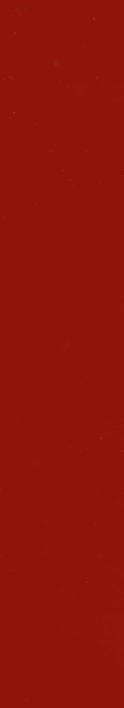 rot lackiert
