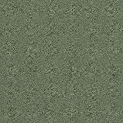 Topas 956O Olive